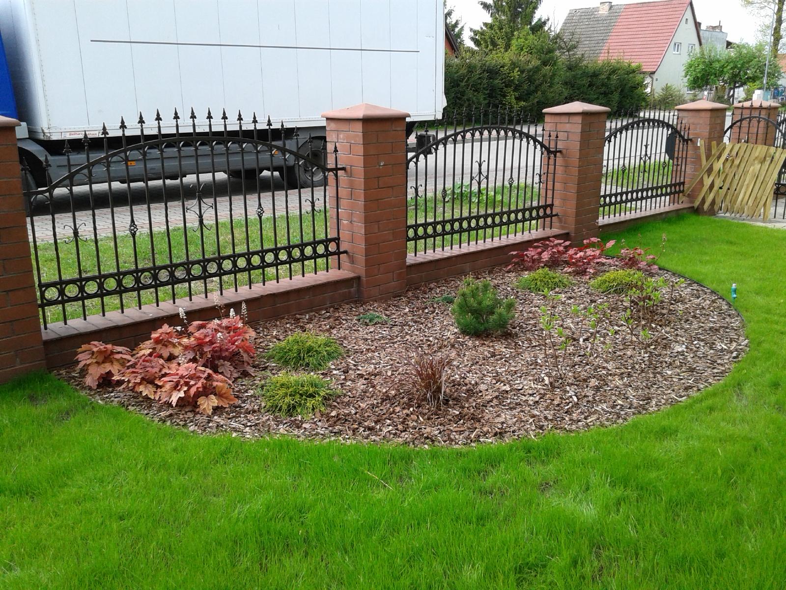 Zielony Ogród Mały Ogród Przed Domem